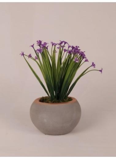 Kibrithane Çiçek Yapay Çiçek Menekşe Beton Saksı Sunumlu Kc00200606 Renkli